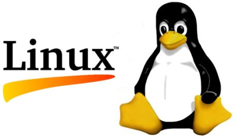 Tux the Linux Penguin mascot